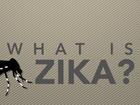 What Zika virus is — and isn't