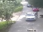 Siberan tiger mauls woman in China