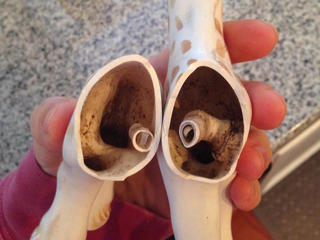 Mold found in toy has parents concerned