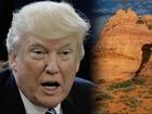 Patagonia slams Trump for executive order