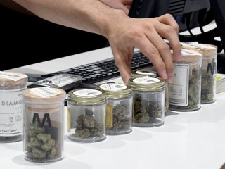 Nevada faces recreational weed shortage