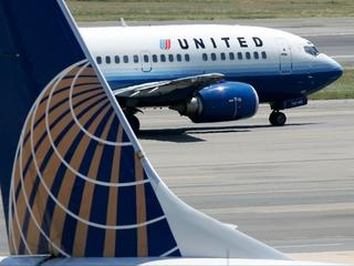 United flies Kansas-bound dog to Japan